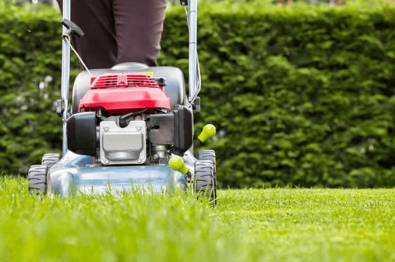 Best Lawn Mower for Wet Grass