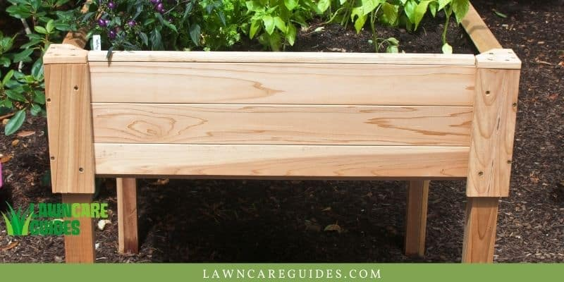 This image has an empty alt attribute; its file name is supported-raised-beds.jpg