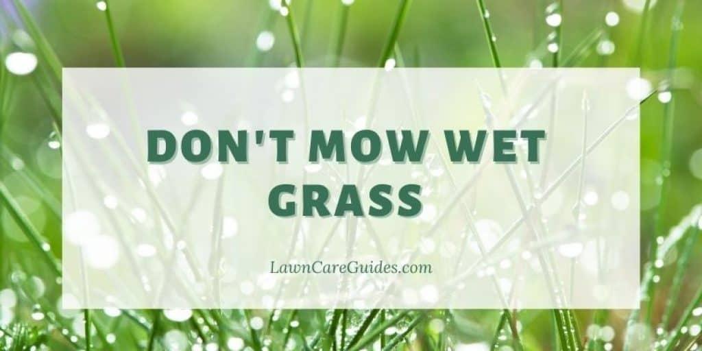 don't mow wet grass